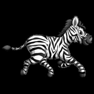 zebra_animal_clipart_image