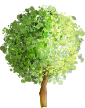 forest-tree-clipart