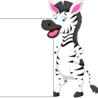 free_download_zebra_and_whiteboard_transparent_background_clipart