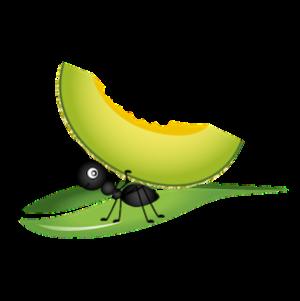 vector_cartoon_ant_carring_fruit_clipart