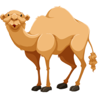 vector_cartoon_camel_free_animal_clipart
