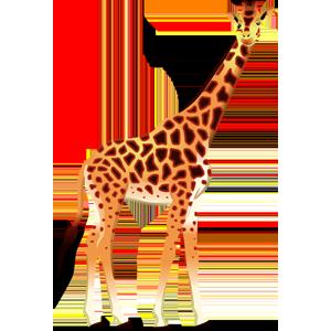 vector_cartoon_giraffe_free_animal_clipart