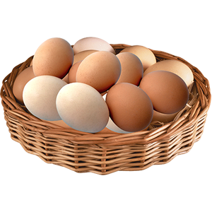 vector_eggs_basket_png_clipart_free_download