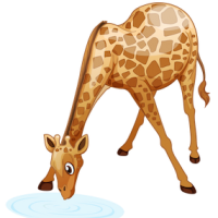 download_vector_giraffe_drinking_water_free_clipart