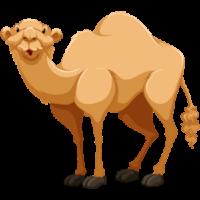 cute-cartoon-arabian-camel-clipart