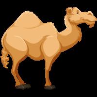 cute-cartoon-desert-animal-camel-clipart