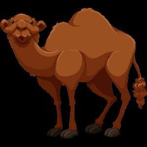 free-download-innocent-desert-animal-camel-clipart